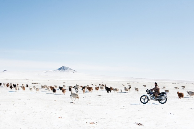http://www.globalonenessproject.org/library/photo-essays/mongolias-nomads
